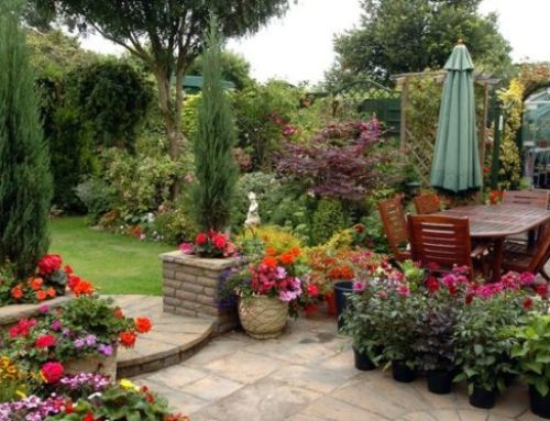 Open Gardens Festival 8 and 9 August